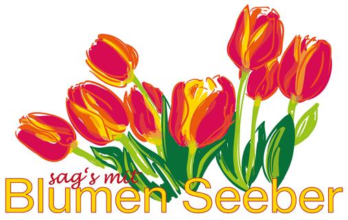 logo-seeber